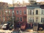 Crown Heights, Brooklyn