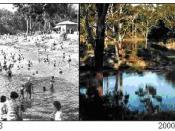Parramatta Lake: 1938 and 2000 compared