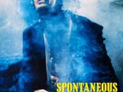 Spontaneous Combustion (film)