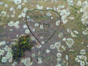 English: Hearts and flowers On the stone parapet of the bridge at Gunthwaite can be found carvings of unrequited love.