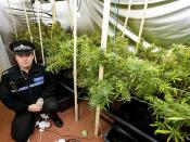 Day 149 - West Midlands Police - Tackling drug related crime