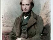 Charles Darwin as a young man, probably subsequent to the Galápagos visit