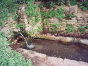 Shipot, a common source of drinking water in a Ukrainian village.