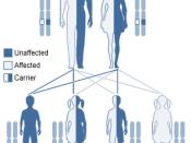 Category:Medical genetics images (Original text : Autosomal recessive inheritance.)