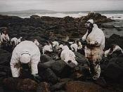 Volunteers cleaning the coastline in Galicia in the aftermath of the Prestige catastrophe, March, 2002
