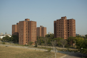 English: The four remaining towers of the Fredrick Douglass housing projects as seen from the nearby Brewster mid-rise buildings.