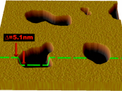 English: Illustration of a typical result from an AFM scan of a supported lipid bilayer. The bilayer shown here has several defects which appear as pits. By measuring the distance from the top of the bilayer to the substrate it is possible to determine th