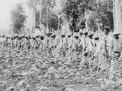 English: Convict workers at Parchman