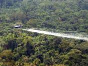 English: A National Police OV-10 plane sprays herbicides over a coca field in Colombia. Español: Fumigaciones de plantaciones de Coca sobre la selva colombiana.