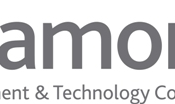 Diamond Management and Technology Consultants Logo