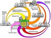Description of fuel-cycles for CANDU reactor