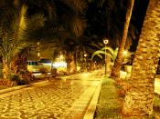 Tropical City Streets at Night