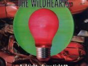 Red Light – Green Light
