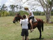 Picture taken at citrus grove between Santa Clara and Havana msh0708-10 horseback riding
