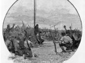 Administering the Oath, Eureka Stockade 1854.