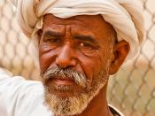 Camel Seller
