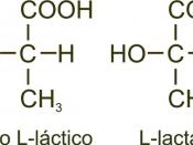 English: L-lactic acid and lactate formula