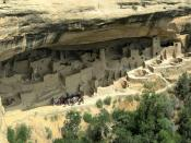 Cliff Palace in Mesa Verde National Park, Colorado, USA: it is the largest of about 4000 preserved Cliff Dwellings (circa 800 years old) built by ancient Pueblo people (Anasazi)