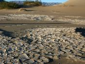 English: Desiccation cracks and Sand Dunes in Death Valley National Park