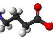 Ball-and-stick model of the gamma-aminobutyric acid (GABA) molecule.