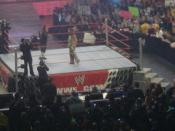 Bret Hart and Shawn Michaels reconcile on the January 4, 2010 episode of WWE Raw.