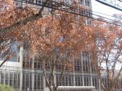Building of the Judicial Power in Mendoza, Argentina