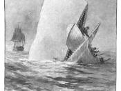 English: Illustration from an early edition of Moby-Dick