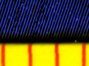 English: Magnified view of the grooves of a 45 rpm vinyl record (Gică Petrescu - Cântece de pahar, Electrecord EDC 590). The red lines mark one milimeter.