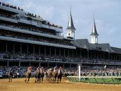 "English: Kentucky Derby, unknown date Permission to use these Kentucky images is provided, free of charge, with the intent of promoting Kentucky as a travel destination. All published images should be credited, ""Courtesy: Kentuckytourism.com""."