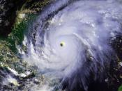 Hurricane Mitch at peak intensity on October 26 at 2028 UTC. This image was produced from data from NOAA-14, provided by NOAA.