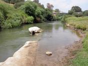 English: Bnot Ya'akov Bridge over the Jordan River near Jacob's Ford, Israel.