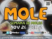 Eat Something Delicious! 2012 Mole Week in Oaxaca, Mexico #rtyear2012