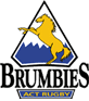 ACT Brumbies logo, used between 1996 and 2004.