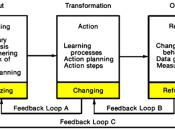 Systems Model of Action-Research Process.