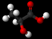 Ball-and-stick model of L -lactic acid
