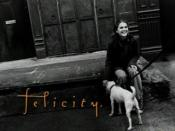 Felicity (TV series)