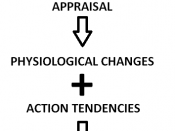 English: Arnold's Appraisal Theory