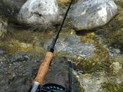 English: fly fishing rod Česky: muškařský prut
