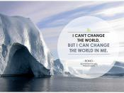I can't change the world, but I can change the world in me