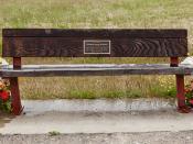 2011-06-22-Marlene-Williams-Memorial-Bench-Flowers-9