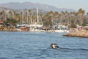 English: Boat entering Ventura Harbor in Ventura, California.