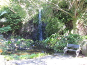 English: Eden Gardens, a former quarry developed into an attraction in Auckland, New Zealand