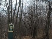 Entrance to Kurtz Woods SNA