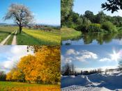 English: Four seasons collage from four Wikimedia Commons images: Spring, Summer, Autumn and Winter
