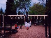 Hanging from monkey bars
