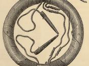 Faraday's ring transformer