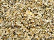 close-up of sand from Third Beach in Vancouver