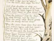 comparative study between lamb and tyger william blake Read and compare the two versions of william blake's tyger' printed below the  one on the  did he who made the lamb make thee what the anvil  the most  obvious difference between the two is that stanza 4 of the draft does not survive.