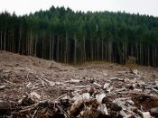 English: Clear-cut forests near Eugene, Oregon.