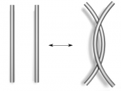 This picture illustrates the Reidemeister move of type II. The move appears as one of fundametal proceidures to deform knots without changing their equivalence class in knot theory (matheamtics). This type II move deals with two portions with no links of